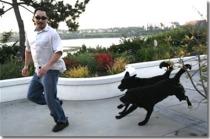 dog_chase_man1
