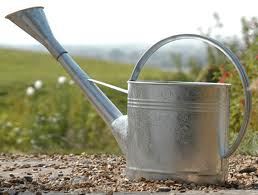 watering.can
